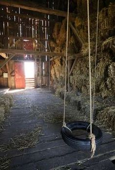 A straw-filled barn makes a great place for young and old to play inside. Barn tire swing. Used to play on these all the time
