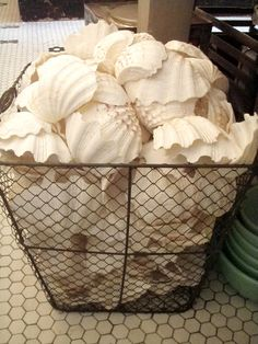 white shells white & wire... textural organics