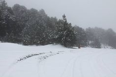 """Nevado """"El Colima"""""""