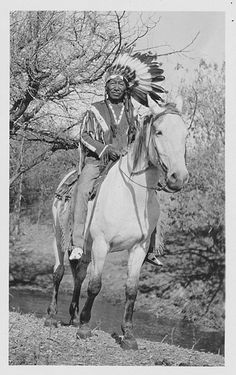 Old Wolf, Chief? Crow Absorkee Apsaalooka, date and photographer unknown.