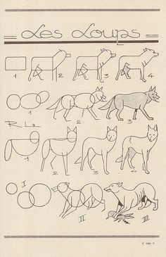les animaux 50 by pilllpat (agence eureka), via Flickr