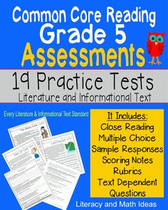 All Of The Common Core Grade 5 Literature And Informational Text Standards Are…