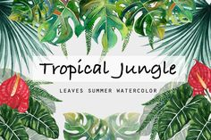 Tropical Leaves Jungle Summertime  by Planolla on @creativemarket