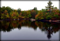 Hidden Lake at Camp #Yawgoog makes the cut!  5 Rhode Island Hikes Off the Beaten Path.  An article by Jen McCaffery posted to Rhode Island Monthly on October 24, 2014.