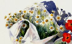 Daisies in a bag, Watercolour, Kathy Lewis