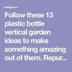 Follow these 13 plastic bottle vertical garden ideas to make something amazing out of them. Repurpose those old bottles, which you usually throw away to grow your favorite plants either indoor or outdoor and help to save our environment. Here are 13 inspiring plastic bottle vertical garden ideas to make a vertical soda bottle garden and these ideas will definitely interest you if you are a creative person, DIY lover and love to recycle. Soda Bottles, Plastic Bottles, Garden Ideas To Make, Bottle Garden, Our Environment, Climbing, Repurposed, Indoor, Amazing