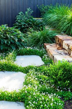 Native violet (viola hederacea) creates a pretty groundcover beside bluestone stepping stones in this cleverly designed garden on a slope. Photography: Scott Hawkins The post How To Maximise A Sloping Garden appeared first on Gardening. Back Gardens, Outdoor Gardens, Gardens On A Slope, Australian Native Garden, Australian Garden Design, Garden Stepping Stones, Garden Steps, Front Garden Path, Garden Archway