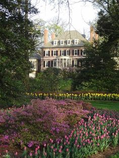 Colonial feel with great front lawn