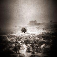 Amazing black and white photography Ebru Sidar