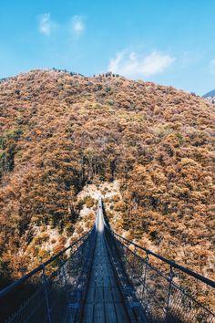 #bridge #tibetan #switzerland #photography #canon #eos #mountain @shadelove Canon Eos, Switzerland, Bridge, Mountain, Photography, Instagram, Photograph, Fotografie, Fotografia