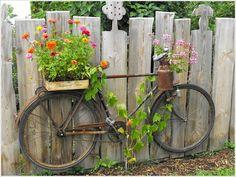 Si tienes un jardín lleno de pasto pero puedes ver la llanura a través de él, te presentamos algunas ideas para que lo decores y luzca asombroso. Container Flowers, Flower Planters, Garden Planters, Fence Plants, Flower Fence, Diy Planters, Flowers Garden, House Plants, Planting Flowers