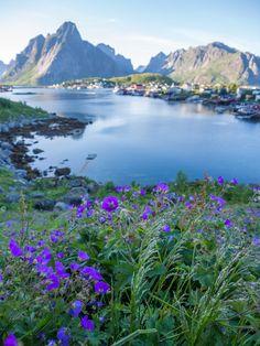 """travel-lusting: """" Reine, Lofoten Islands, Norway (by Wesley & Brandon…"""