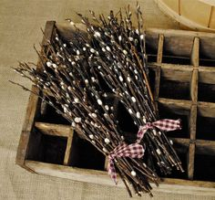 Natural Pussy Willows  Pussy Willow Branches  by TALLCOTTONnPEAS, $16.00