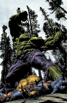 Hulk vs Wolverine - Mike Deodato Jr.