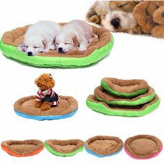 Warm Pet Dog Cat Bed Nest Puppy Cozy Plush Cushion House Soft Warm Kennel Mat Blanket -- Read more reviews of the product by visiting the link on the image. (This is an affiliate link) #Pets