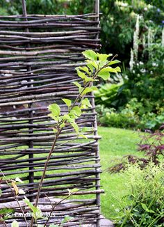 Twig fence for shadow and wind protection, from Landet Krokus