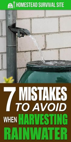 In this video from the Youtube channel, Starry Hilder Off Grid Homestead, Starry goes over 7 common mistakes people make when harvesting rainwater. #homesteadsurvivalsite #rainwatercollection #rainwaterharvesting #rainwatercollectionsystem #rainwaterharvestingsystem Off Grid Survival, Survival Tips, Homestead Survival, Camping Survival, Survival Food, Survival Skills, Off The Grid Homes, Off Grid House, Off Grid Cabin