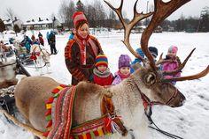 reinsdyr same - Google-søk Sons Of Norway, Lappland, Handicraft, Finland, Camel, Google, Kids, Animals, Craft