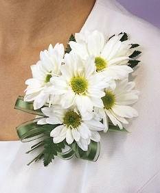 White Daisy Corsage (but make it a wrist corsage)