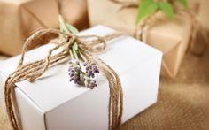 2015 Natural {+ Fun} Gift Guide! - Rochelle Serna