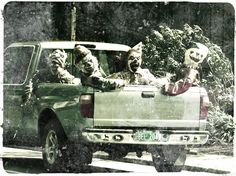 Clowns on the prowl...