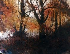 Pete Gilbert; Watercopse Inclosure, New Forest