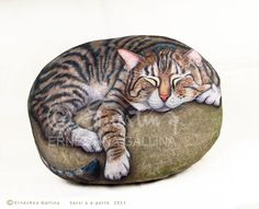 Washington, a cat on rock, hand painted by Ernestina Gallina. https://www.facebook.com/pietrevive.ernestina