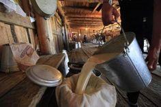 Minum susu kambing dan lembu mentah boleh bawa maut  Ketua Pengarah Kesihatan   Minum susu kambing dan lembu mentah boleh bawa maut  Ketua Pengarah Kesihatan | Amalan meminum susu mentah termasuk susu lembu dan kambing tanpa perlakuan haba seperti pendidihan atau pempasteuran boleh meningkatkan risiko jangkitan penyakit.  Ketua Pengarah Kesihatan Datuk Dr Noor Hisham Abdullah berkata susu mentah berkemungkinan mengandungi bakteria berbahaya seperti mycobacterium bovis atau brucella dan boleh…