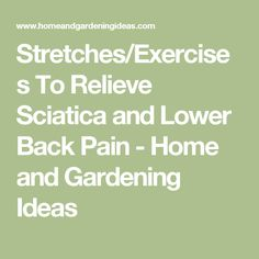 Stretches/Exercises To Relieve Sciatica and Lower Back Pain - Home and Gardening Ideas
