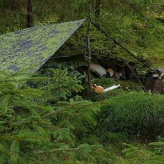 I am not much of a camo-guy when it comes to my gear. But on light overnighters during our terrible wet and rainy fall I happen to use the danish bivvy for my sleepingbag, since I find it easier to controle the condensation than the damp from the outher elements when not having a campfire. #forest #skov #spruceforest #udeliv #overnight #autumn #efterår #bushcraft #primitive #tarp #camplife #sleep #bushcrafting #moss #friluftsliv #outside #camping #bushcrafter #mos #bushcraftcamp…