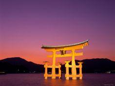 Google Image Result for http://imgc.allpostersimages.com/images/P-473-488-90/26/2659/B5DUD00Z/posters/steve-vidler-miyajima-island-itsukushima-shrine-torii-gate-night-view-honshu-japan.jpg