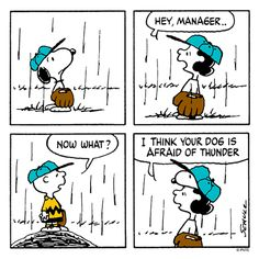 Charles Schulz's Peanuts Charlie brown , Lucy Van Pelt and Snoopy Snoopy Cartoon, Snoopy Comics, Peanuts Cartoon, Peanuts Snoopy, Peanuts Comics, Paul Mccartney, Charlie Brown Comics, Charlie Brown And Snoopy, Snoopy Love