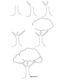 In this article, we will be taking you through how to draw a tree step by step image guides, which is one of nature's bounties that inspires so many. Befor to drawing a tree How To Draw A Tree (Step By Step Image Guides) Easy Drawings Sketches, Tree Sketches, Pencil Art Drawings, Doodle Drawings, Cartoon Drawings, Cute Drawings, Simple Sketches, Amazing Drawings, Drawing Lessons For Kids