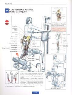 Curl de piernas alterno | Leg bend - http://fitnessallya.com/curl-de-piernas-alterno-leg-bend/