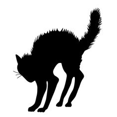 Scary Halloween Black Cat Silhouette