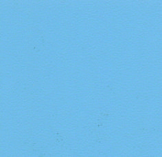 8343 Russian Blue