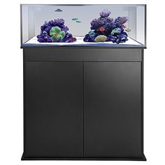 Innovative Marine Innovative Marine Nuvo Fusion 30L Micro 30 Gallon Long Aquarium, Clear, Glass Aquariums - http://aquarium-world.com/?product=innovative-marine-innovative-marine-nuvo-fusion-30l-micro-30-gallon-long-aquarium-clear-glass-aquariums