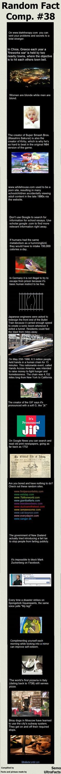 Random Fact Comp. 38
