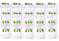 Grow Your Own: How To Make a Hydroponic Grow System from IKEA Parts The Gardenist | Apartment Therapy