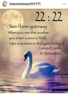 Angel Guidance, Spiritual Guidance, Spiritual Awakening, Spiritual Quotes, 1111 Twin Flames, Twin Flame Quotes, Twin Flame Love, Number Meanings, Hearts