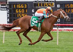 UPI Horse Racing Weekend Preview : International Horse Breeding and Racing news…