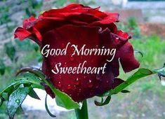 https://www.facebook.com/photo.php?fbid=401071140334356