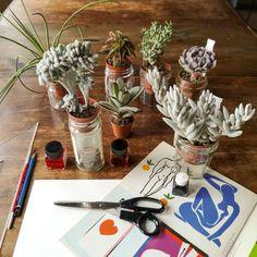Blossomzine per Cactusmania – Matisse e le piante grasse   BLOSSOM ZINE BLOG Cactus, Matisse, Zine, Succulents, Table Settings, Table Decorations, Blog, Henri Matisse, Succulent Plants