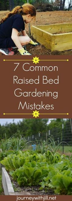7 Common Raised Bed Gardening Mistakes #raisedgardening