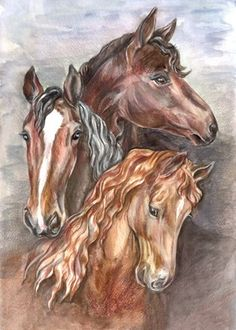Kon ik ook maar zo goed tekenen!! Vas heel veel geoefend!!! Dat zal ik ook doen!!  Gegroet! Horse Drawings, Art Drawings, Horse Artwork, Horse Portrait, Horseshoe Art, Horse Farms, Equine Art, Beautiful Horses, Mammals