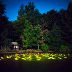 Landscape Light Installations by Barry Underwood