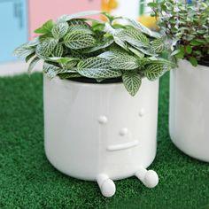 pot with drainhole option