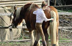 Beatrice Borromeo passeia de cavalo pela Provença francesa