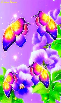 BEAUTIFUL BUTTERFLY FOR YOU ~^~^~^^~