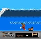 T&C Surf Design...Wood & Water Rage. I used to play the hell out of this game on my old NES.